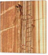 Silo Ladder Wood Print