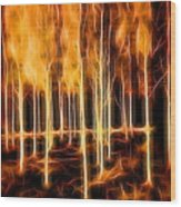 Silver Birches Flaming Abstract  Wood Print