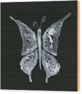 Silver Buterfly Wood Print
