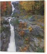 Silver Cascade In Autumn Wood Print