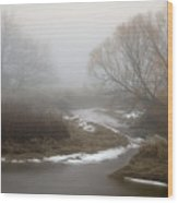 Silver Creek In Elberton Wood Print