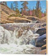 Silver Creek Rapid Wood Print