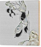 Silver Dollar Abstract Wood Print