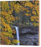 Silver Falls State Park Oregon Wood Print