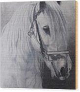 Silver-gypsy Cob Wood Print