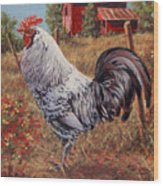 Silver Laced Rock Rooster Wood Print by Richard De Wolfe
