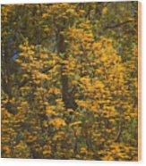 Silver Oak Wood Print