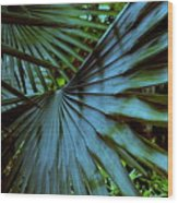Silver Palm Leaf Wood Print