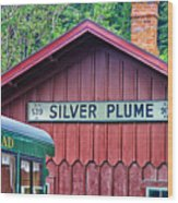 Silver Plume Station Wood Print