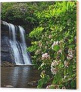 Silver Run Falls Mountain Laurel Wood Print