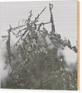 Silver Snow Wood Print