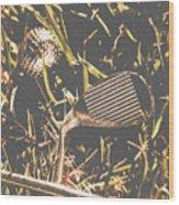 Silver Sports Wood Print