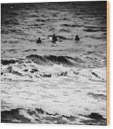 Silver Surfers Wood Print