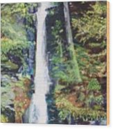 Silver Thread Falls Wood Print