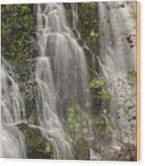Silverdale Falls 2 Wood Print