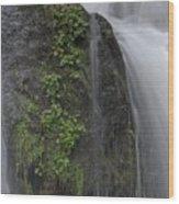 Silverdale Falls Wood Print