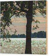 Silvery Sunset Wood Print