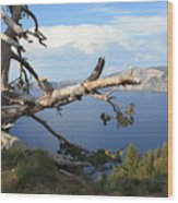 Silvery Tree Over Crater Lake Wood Print