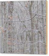 Silviculture Wood Print