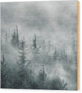 Simbiosis II Wood Print