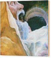 Simeon And His Salvation Wood Print