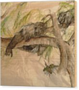Simian And Beetle Wood Print