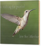 Simple Country Truths Hummingbird Wood Print