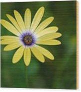 Simple Flower Wood Print