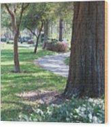 Simple Side Walk Wood Print
