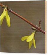 Simple Yellow Wood Print