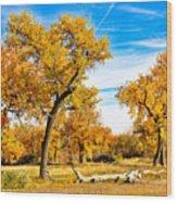Simply Autumn Wood Print
