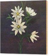 Simply Daisies Wood Print