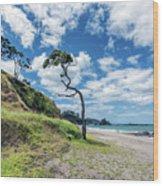Simply New Zealand Wood Print