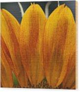 Simply Petals Wood Print