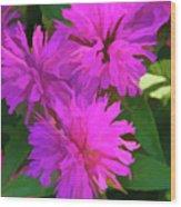 Simply Soft Pink Petals Wood Print