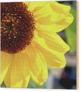 Simply Sunflower Wood Print