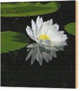 Simply White On Black Wood Print