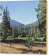 Simpson Meadow - Sierra Wood Print