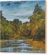 Sinamaica Lake - Venezuela Wood Print