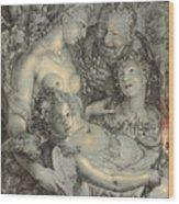 Sine Cerere Et Libero Friget Venus Wood Print
