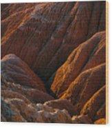 Sinews Wood Print