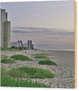 Singer Island Florida Beach Wood Print