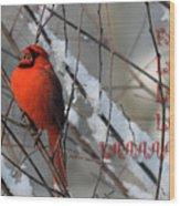 Singing Cardinal Christmas Card Wood Print
