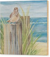Singing Greeter At The Beach Wood Print