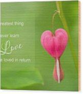 Single Bleeding Heart Flower In My Spring Garden Wood Print