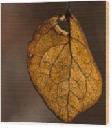 Single Fall Leaf Wood Print