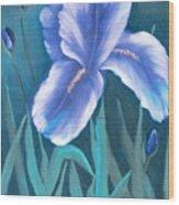 Single Iris With Buds Wood Print