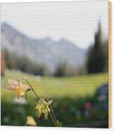 Single Mountain Flower Wood Print
