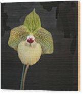 Single Orchid Wood Print