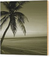 Single Palm At The Beach Wood Print